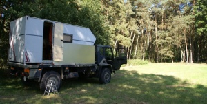 T 244 im Wald